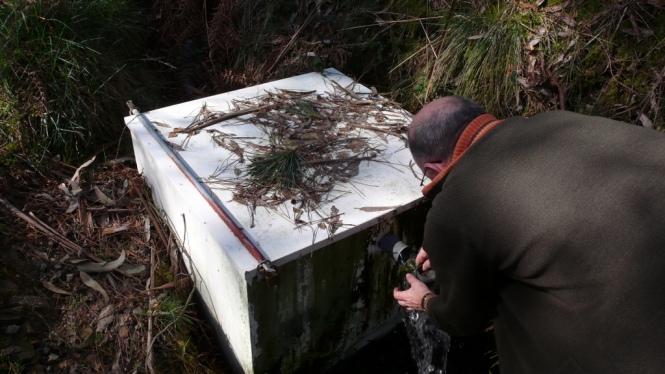 Caja de captación y detalle de mantenimiento del filtro del rebosadero
