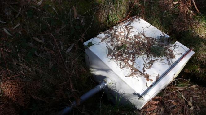 Caja de captación y vista de la entrada de la tubería de conexión de PVC